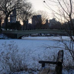 Un mois à NYC – Central Park en hiver et sous la neige